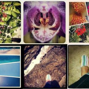 Spring/Summer Instagram Inspiration