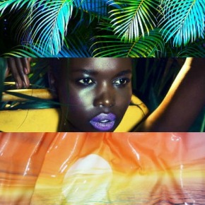 Weekend Inspiration: Tropical Darkness