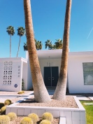 Palm-Springs-Door-Tour-7