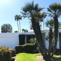 Palm-Springs-Door-Tour-10
